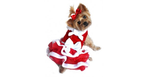 White Christmas Santa Girl Velvet Dress
