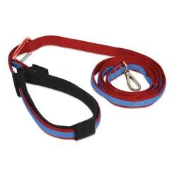 Quantum Leash - Red/Blue
