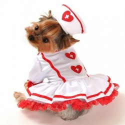 Cutie Nurse Dog Costume