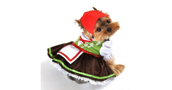 sc 1 st  Doggy in Wonderland : girl dog costume  - Germanpascual.Com