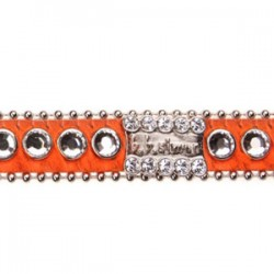 BB Simon Dog Collar - Orange with Clear Crystals