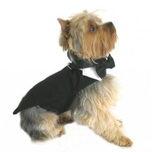 Black Tuxedo with Tails, Top Hat, & Bow Tie Collar