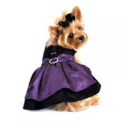 Black Velvet & Purple Satin Dog Harness Dress with Leash