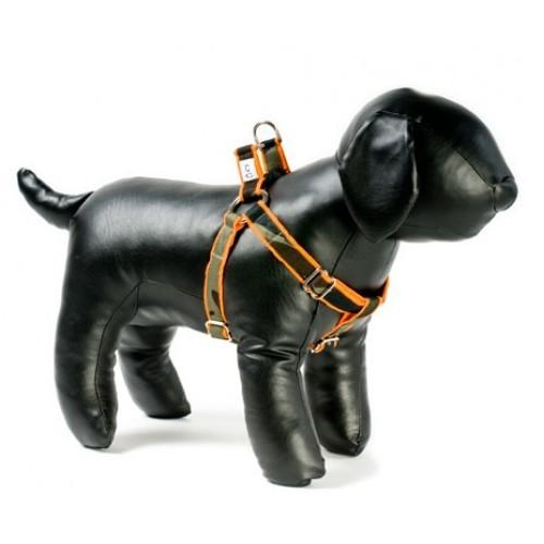 Camo on Orange Adjustable Step-in Dog Harness