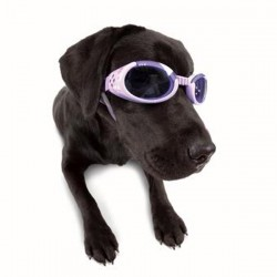 Doggles - Lilac Frame with Flowers Lilac Lens
