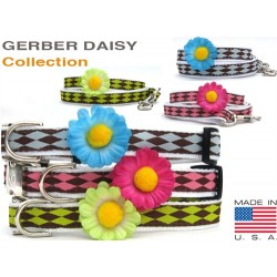 Gerber Daisy Collection Dog Collars & Leashes - All Metal Buckles