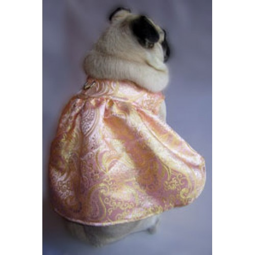 Golden Blush Party Dog Dress
