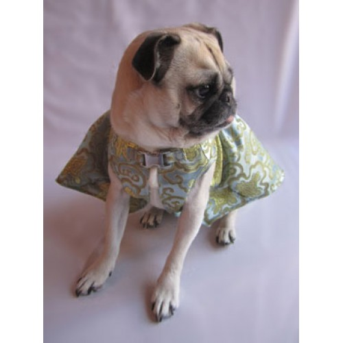 Golden Rain Party Dog Dress
