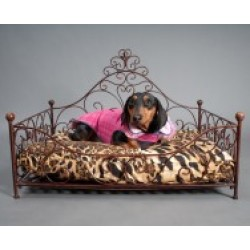 iron wild pup bed for dogs