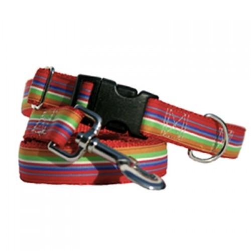 Jackson Stripe Collars & Leads