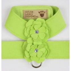 Kiwi Tinkies Garden Series Harness by Susan Lanci Designs
