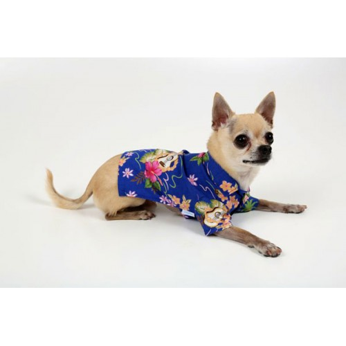 Kona Beach Dog Shirt - available in 3 colors!