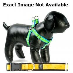 Lemon Soda Adjustable Step-in Dog Harness