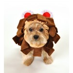 Lion Head Costume for Dogs