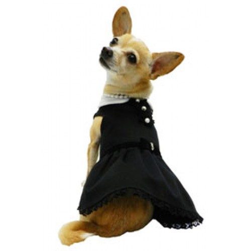 Little Black Dog Dress by Ruff Ruff Couture® - beautiful & sophisticated!
