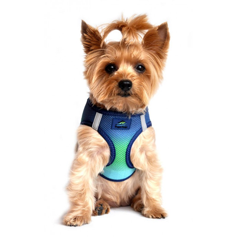Northern Lights American River Dog Harness Ombre Collection