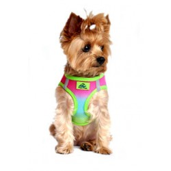 Rainbow American River Dog Harness - Ombre Collection