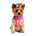 Raspberry Pink and Orange American River Dog Harness - Ombre Collection