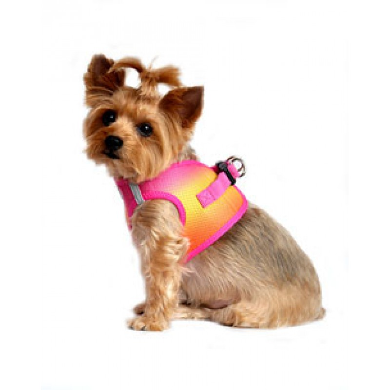 Raspberry Pink And Orange American River Dog Harness