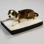Orthopedic Lounge Pet Bed with Cream Sherpa