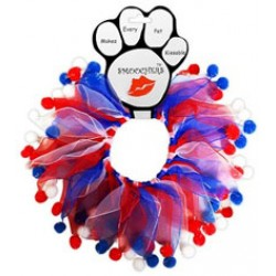 Patriotic Smoocher for your Doggy - 2 styles to choose from!