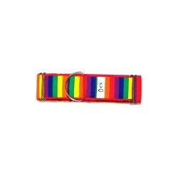 Red Rainbow Martingale Collars