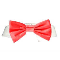 Red Satin Bowtie Collar for Dogs