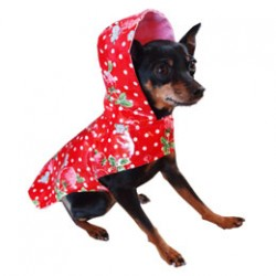 Scarlet Raincoat for Dogs
