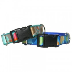 Swanky Dots - Royal & Teal Collars & Leashes