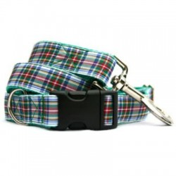 White Plaid Collar & Leash