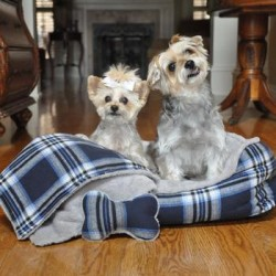 Ultra Soft Plush Blue Plaid Pet Bed with Bone and Blanket