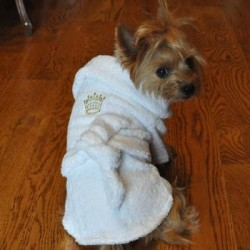 White Gold Crown Cotton Dog Bathrobe