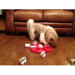 Treat Dispensing Dog Toys