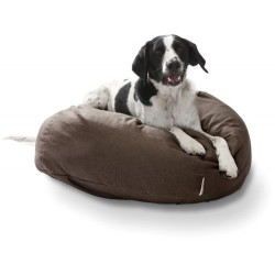 Comfy Dog Beds