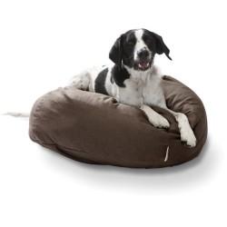 Comfy Dog Beds