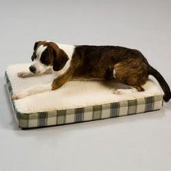 Orthopedic Pet Beds